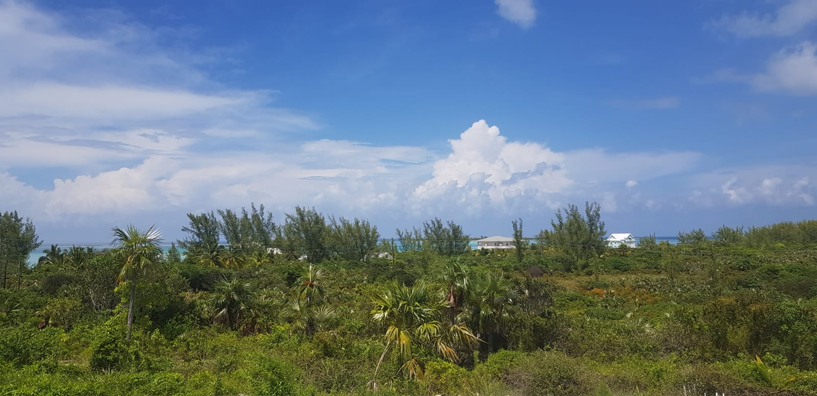 /listing-amazing-ocean-views-27997.html from Coldwell Banker Bahamas Real Estate