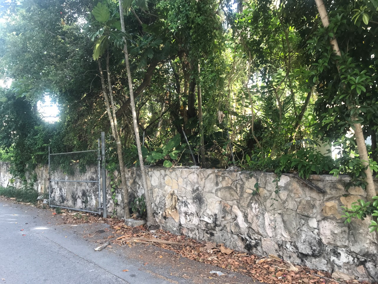 /listing-pending-chippingham-road-29409.html from Coldwell Banker Bahamas Real Estate