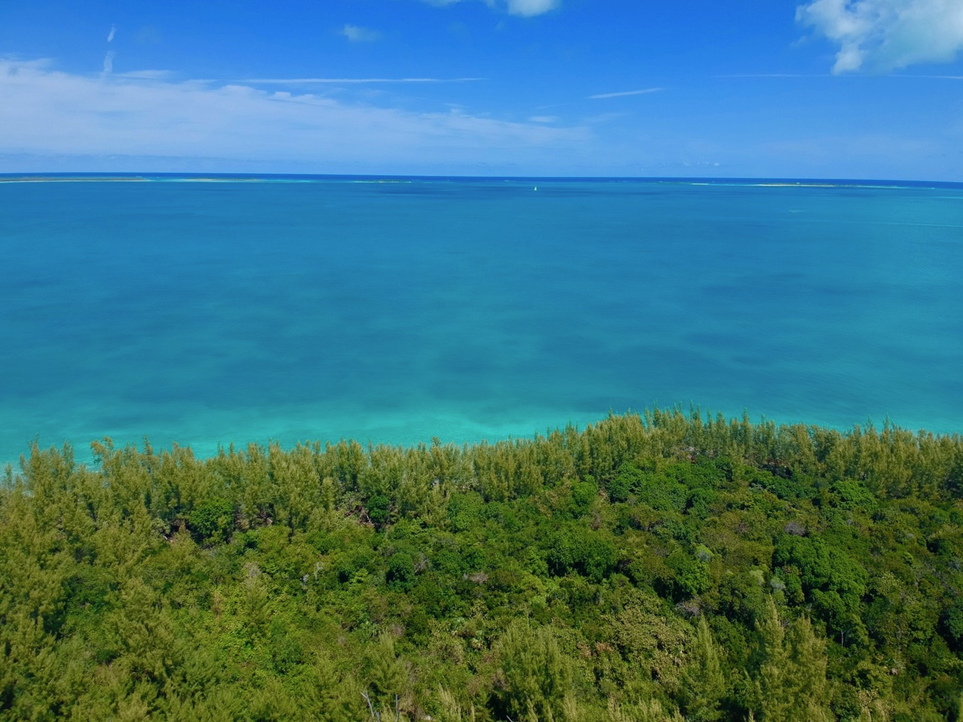 /listing-single-family-waterfront-lot-29410.html from Coldwell Banker Bahamas Real Estate