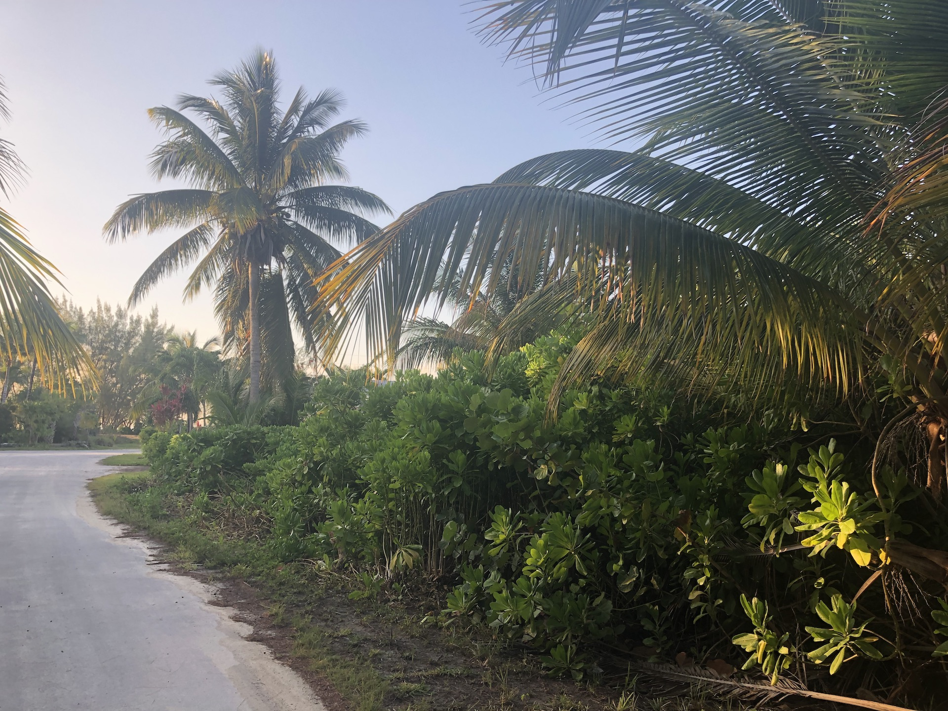 /listing-single-family-vacant-lot-29458.html from Coldwell Banker Bahamas Real Estate