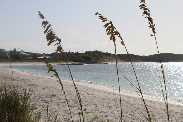 /listing-ocean-view-lot-30470.html from Coldwell Banker Bahamas Real Estate