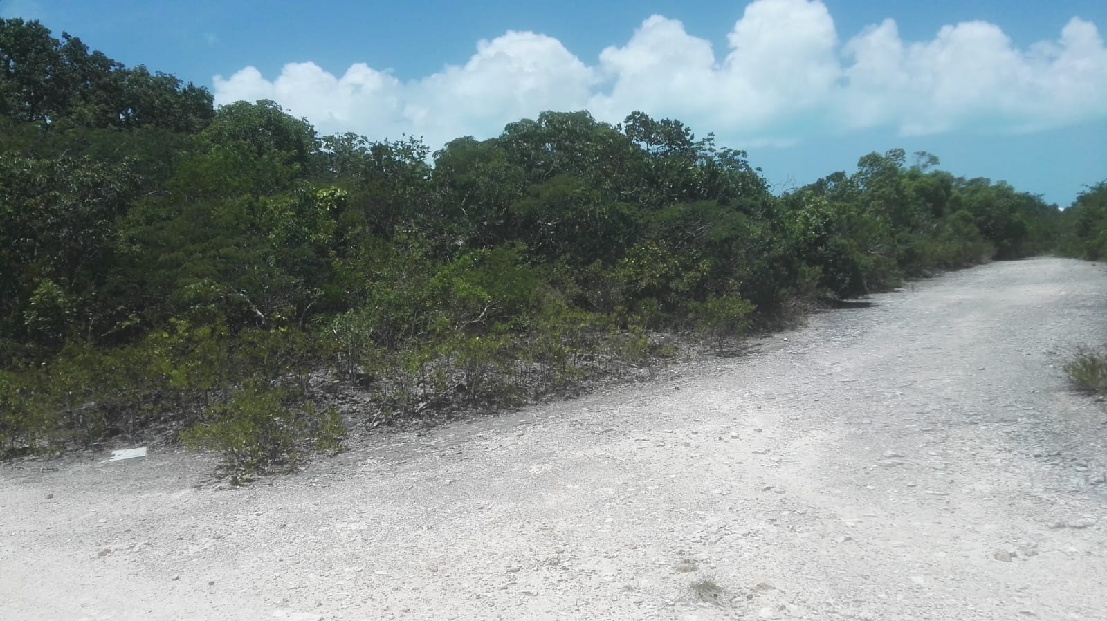 /listing-pending-lot-7883-master-harbour-bsd-11-31148.html from Coldwell Banker Bahamas Real Estate
