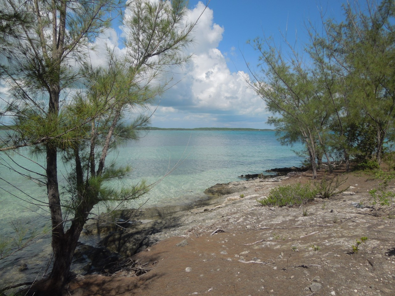 /listing-whale-point-lots-11-48-and-49-31501.html from Coldwell Banker Bahamas Real Estate