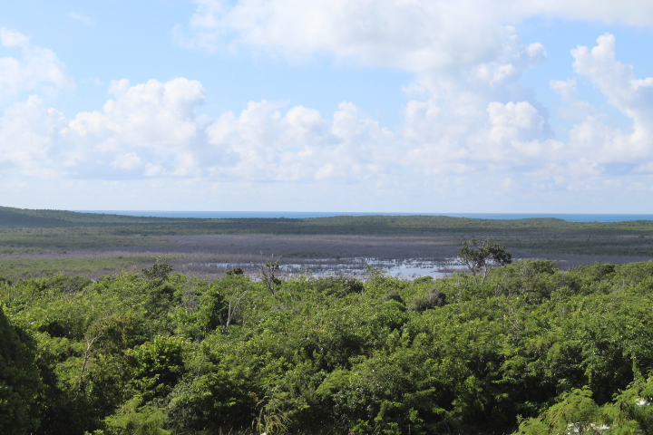 /listing-acreage-with-views-31616.html from Coldwell Banker Bahamas Real Estate