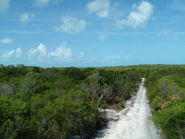/listing-lot-10345-bsd-9-31716.html from Coldwell Banker Bahamas Real Estate