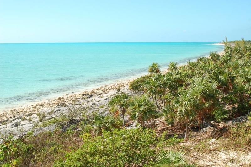 BAHAMA ISLAND BEACH 4