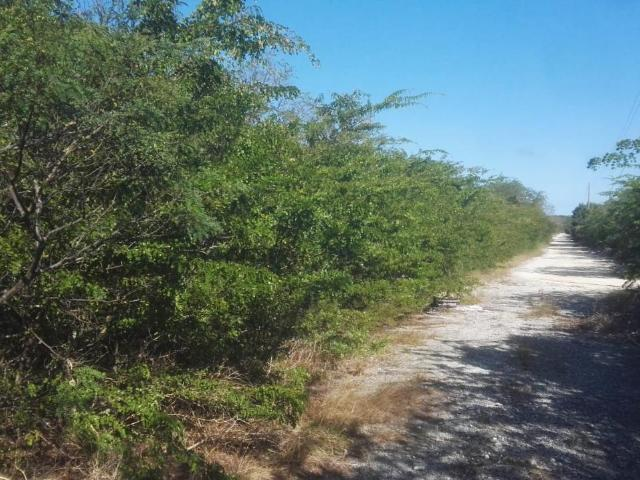 /listing-gosport-road-hartswell-exuma-33385.html from Coldwell Banker Bahamas Real Estate