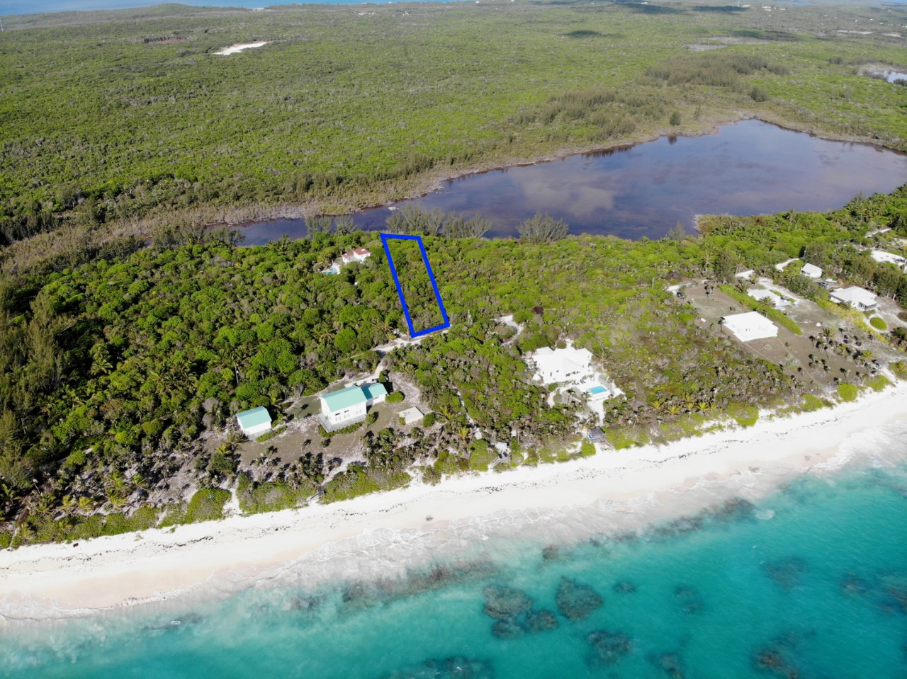 /listing-north-palmetto-point-33750.html from Coldwell Banker Bahamas Real Estate