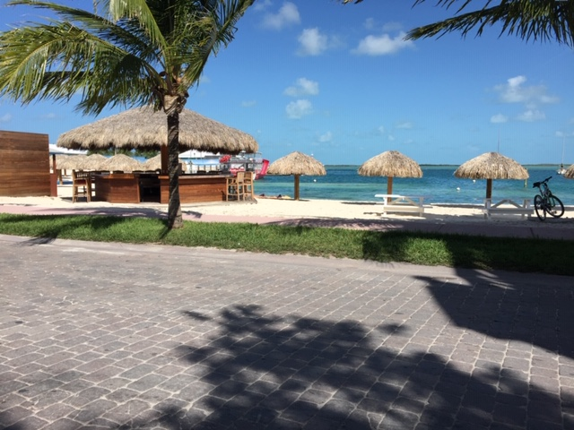 /listing-condo-in-gated-community-bimini-bay-33770.html from Coldwell Banker Bahamas Real Estate