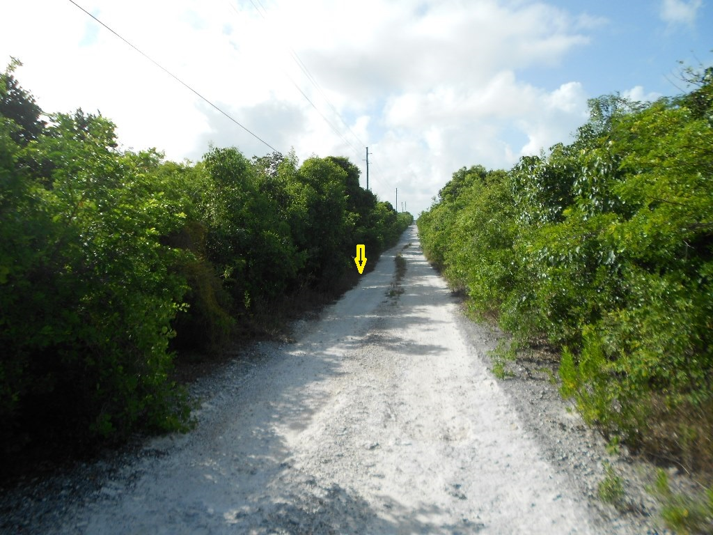 /listing-lot-10948-bsd-8-34117.html from Coldwell Banker Bahamas Real Estate