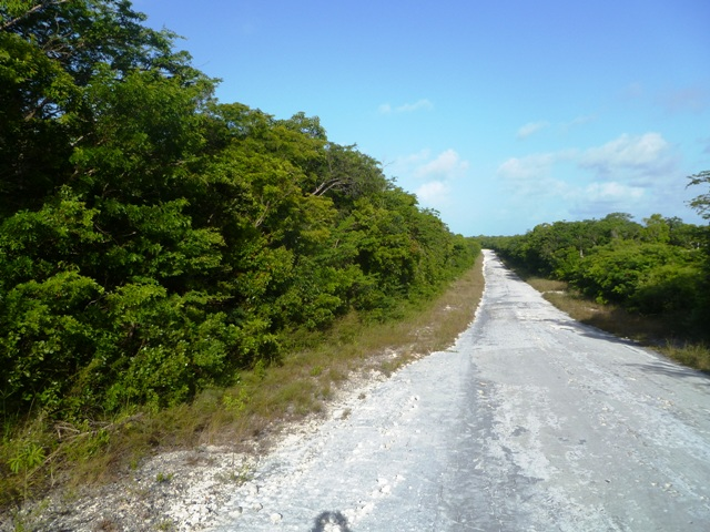 /listing-lot-6183-bsd-7e-on-blvd-road-34118.html from Coldwell Banker Bahamas Real Estate