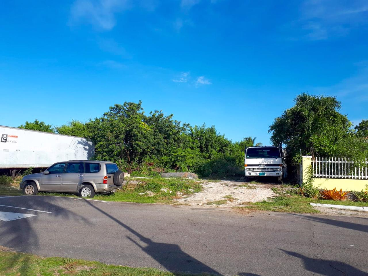 /listing-winton-meadows-subdivision-lot-118-34289.html from Coldwell Banker Bahamas Real Estate