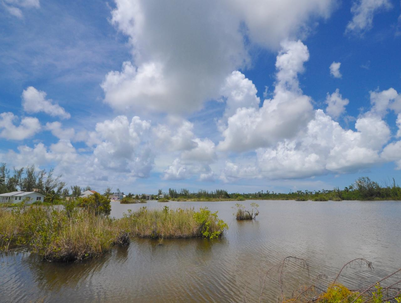 /listing-lakefront-lot-coral-lakes-34622.html from Coldwell Banker Bahamas Real Estate
