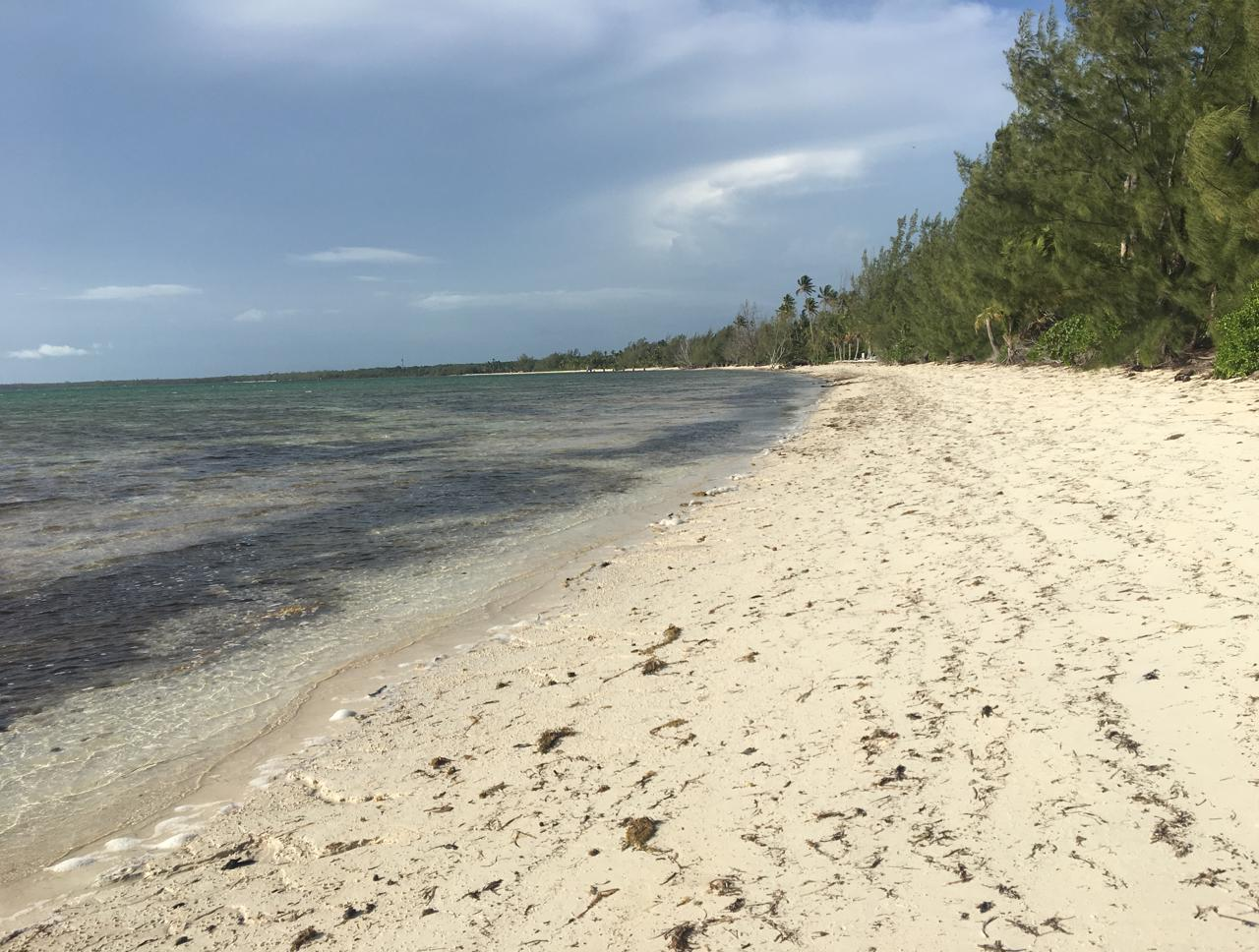 /listing-mangrove-cay-lot-1-queens-highway-34915.html from Coldwell Banker Bahamas Real Estate
