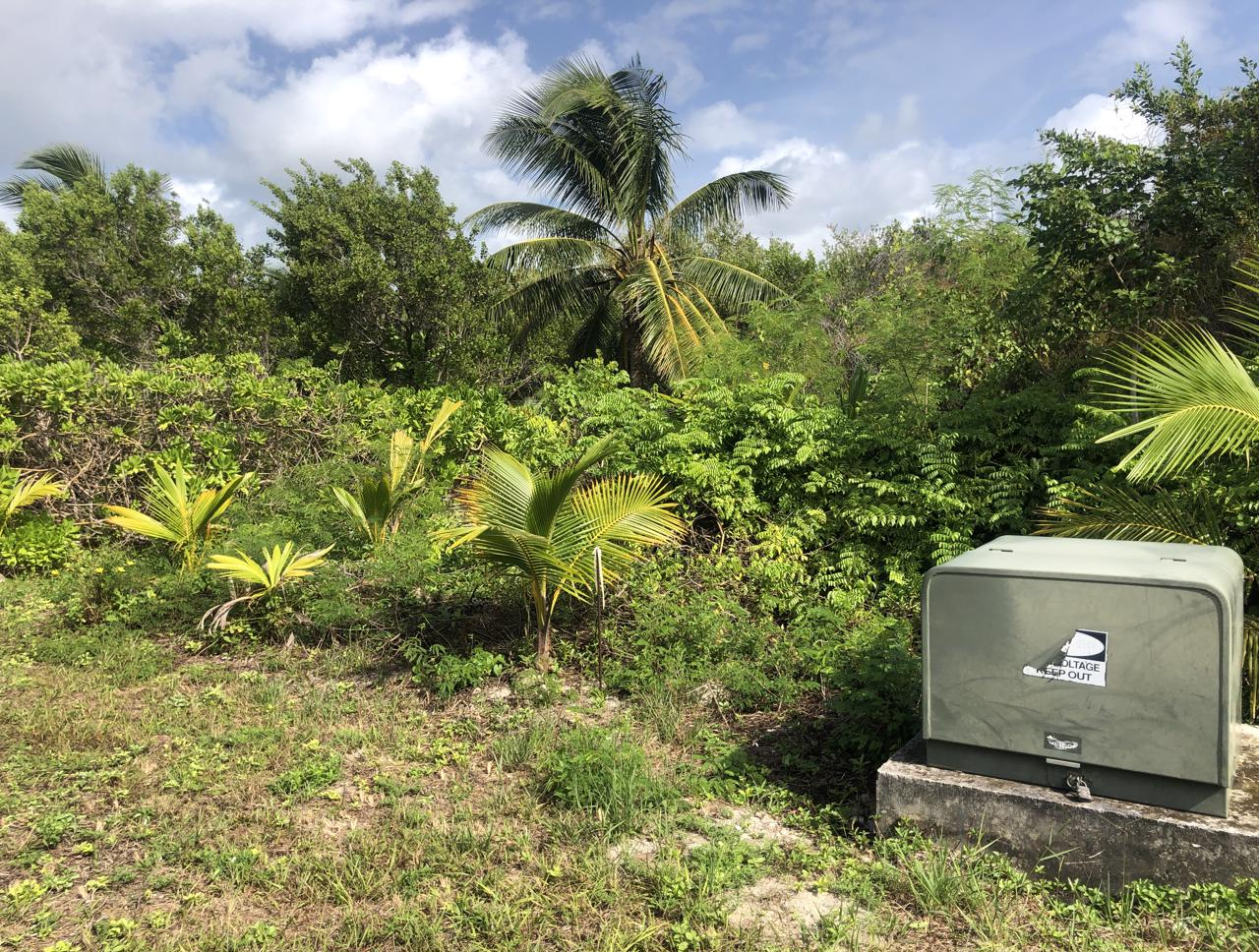 /listing-gilpin-point-near-crossing-rocks-34916.html from Coldwell Banker Bahamas Real Estate