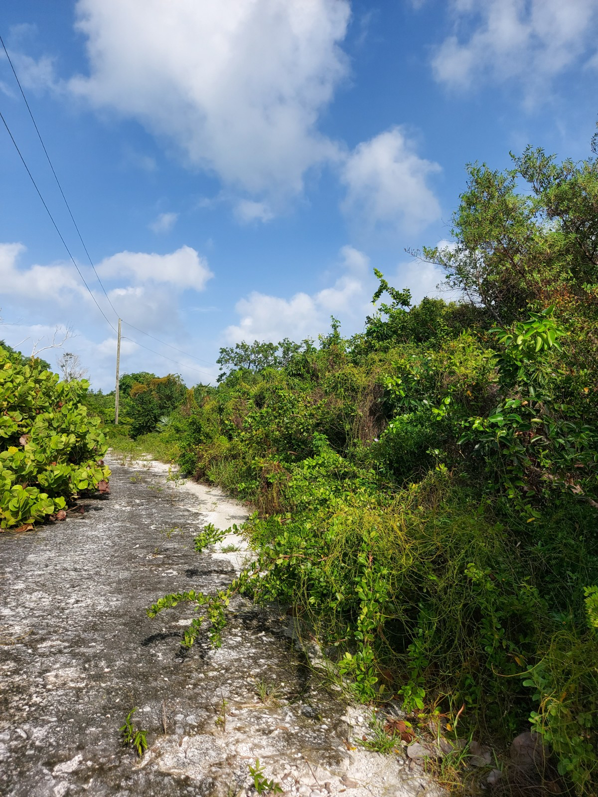 /listing-close-to-amenities-34935.html from Coldwell Banker Bahamas Real Estate
