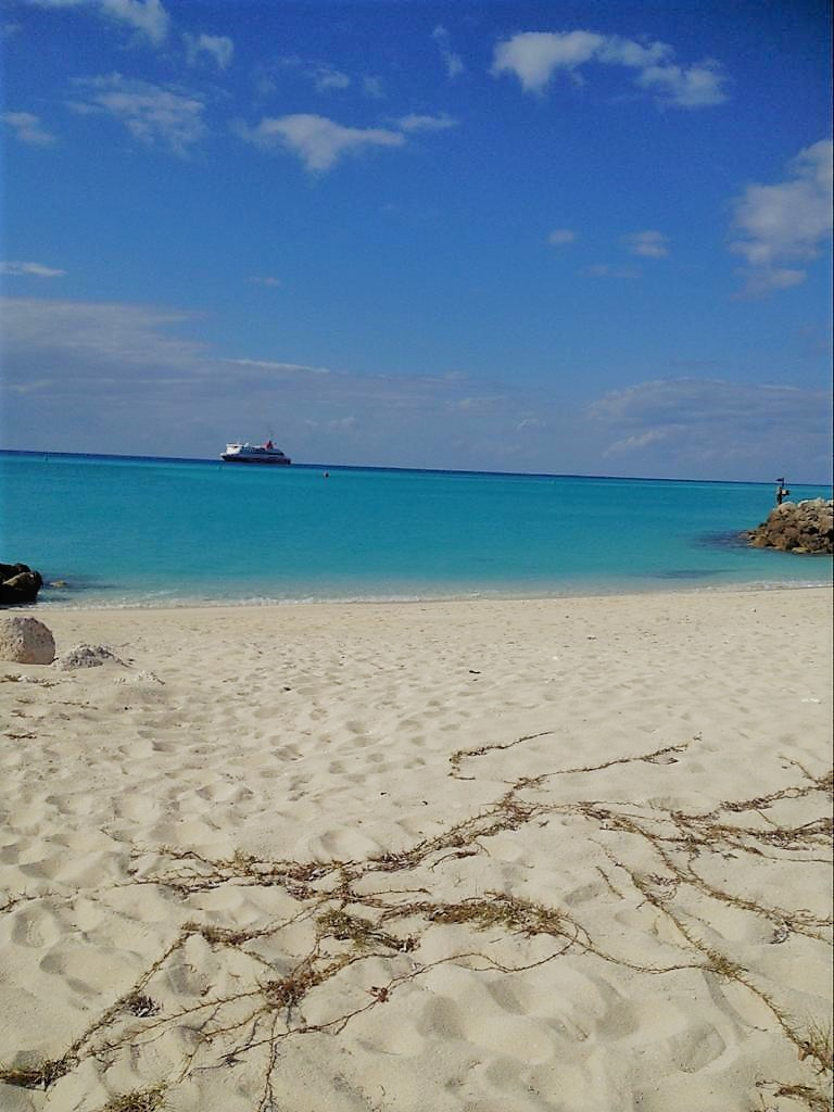 /listing-beach-front-condo-bimini-cove-resort-35450.html from Coldwell Banker Bahamas Real Estate