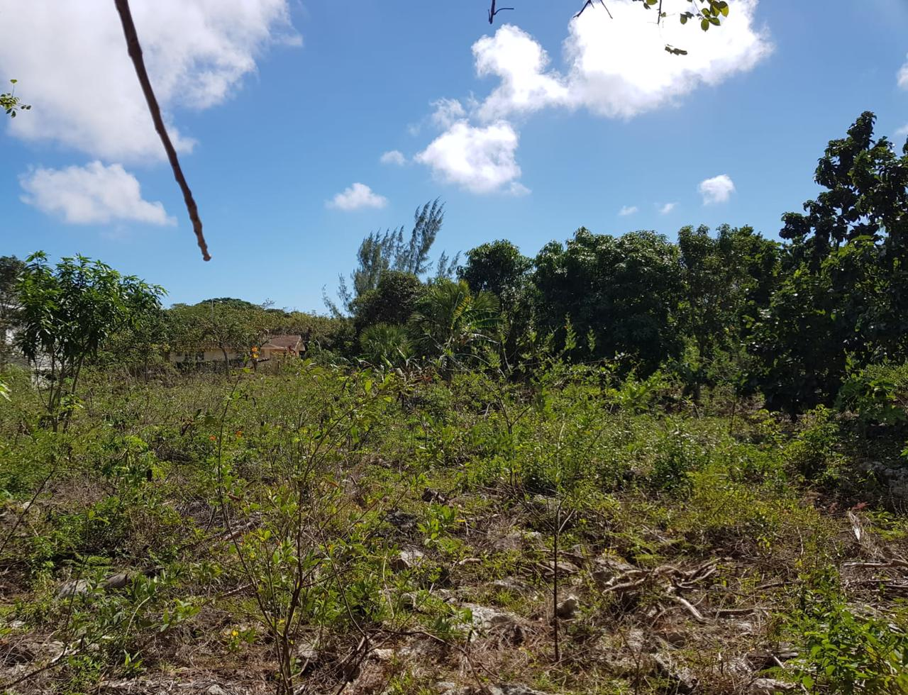 /listing-single-family-vacant-lot-for-sale-36042.html from Coldwell Banker Bahamas Real Estate