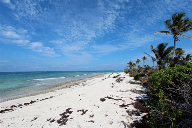 /listing-eleuthera-beachfront-lot-3605.html from Coldwell Banker Bahamas Real Estate