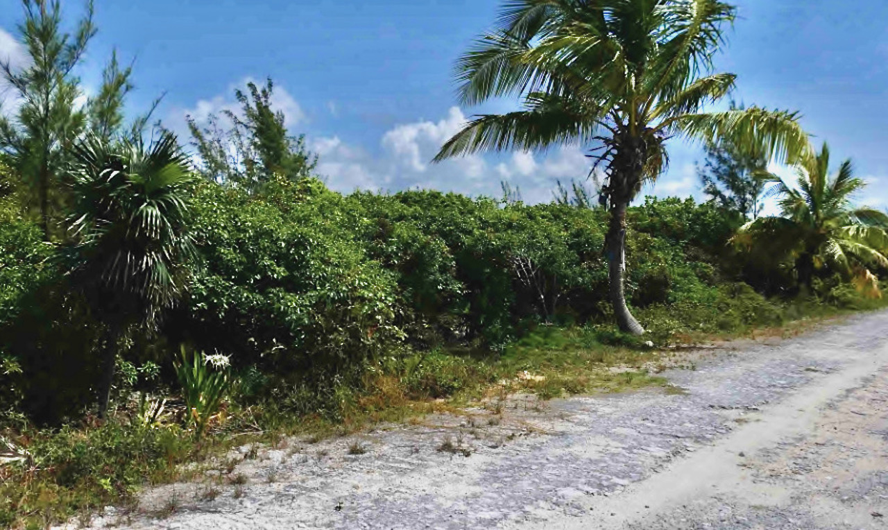 bahama-palm-shores-vacant-oceanview-lot-abaco-real-estate-5