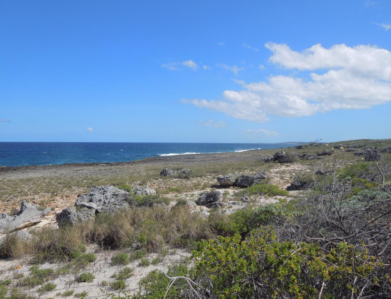 /listing-eleuthera-waterfront-property-for-sale-36743.html from Coldwell Banker Bahamas Real Estate
