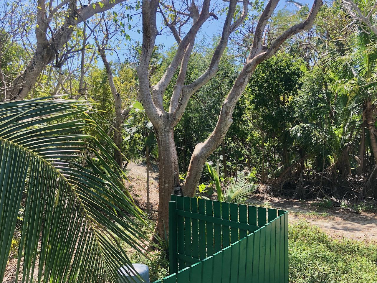 bahama-palm-shores-beachfront-home-for-sale-13