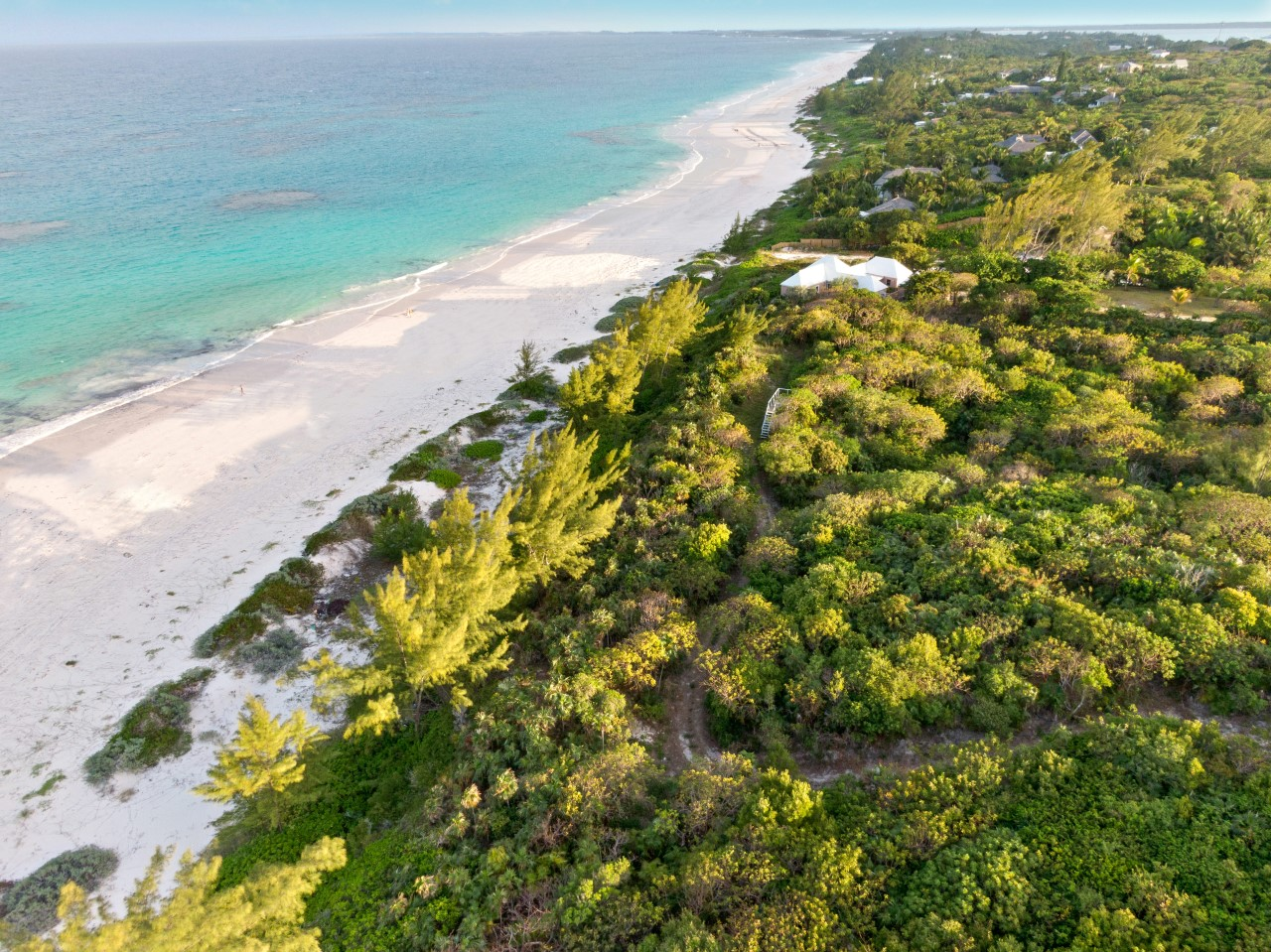 Harbour Island Beachfront Acreage