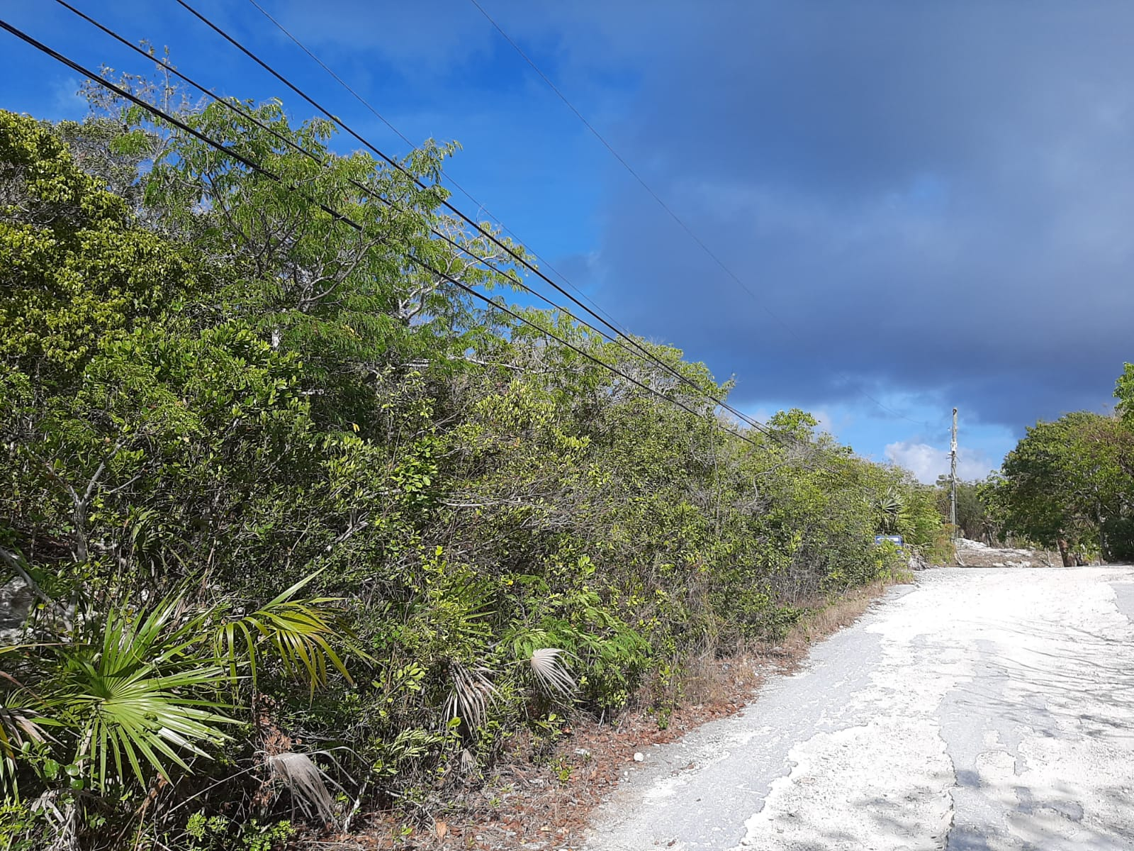 /listing-lot-11-hoopers-bay-great-exuma-37469.html from Coldwell Banker Bahamas Real Estate
