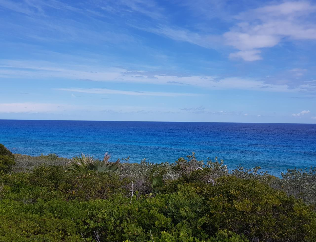 /listing-pending-eleuthera-single-family-lot-for-sale-37508.html from Coldwell Banker Bahamas Real Estate