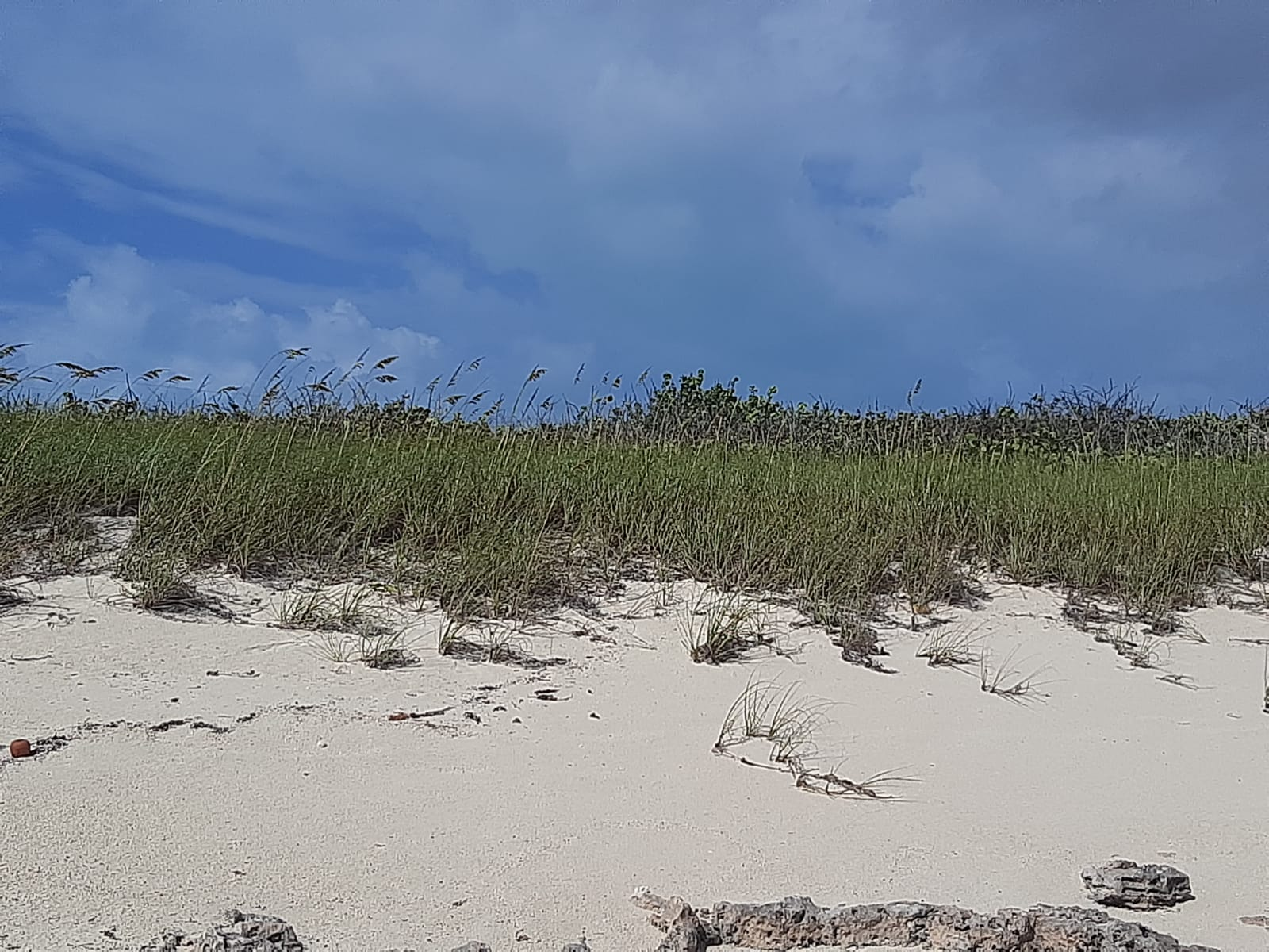 /listing-pending-waterfront-lot-14999-bahama-sound-ocean-addition-east-37734.html from Coldwell Banker Bahamas Real Estate
