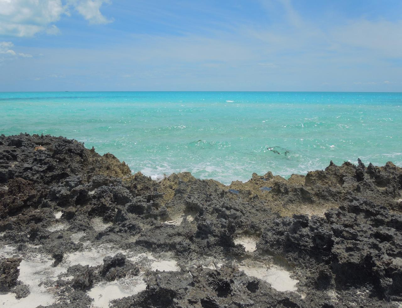 /listing-eleuthera-waterfront-acreage-for-sale-37736.html from Coldwell Banker Bahamas Real Estate