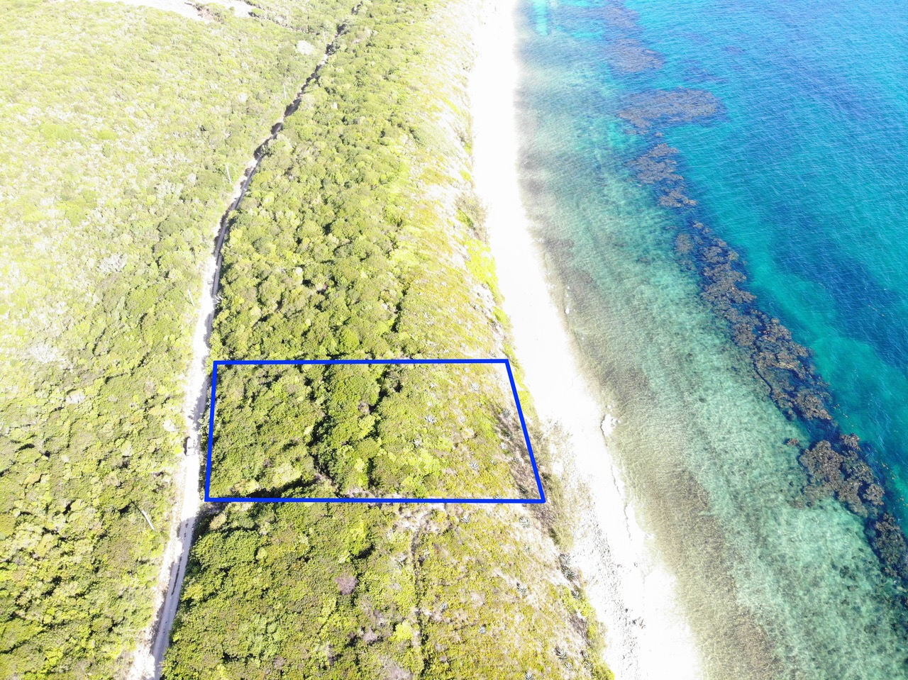 /listing-eleuthera-ocean-front-lot-for-sale-38058.html from Coldwell Banker Bahamas Real Estate
