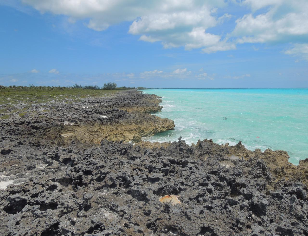 /listing-eleuthera-waterfront-acreage-for-sale-38129.html from Coldwell Banker Bahamas Real Estate