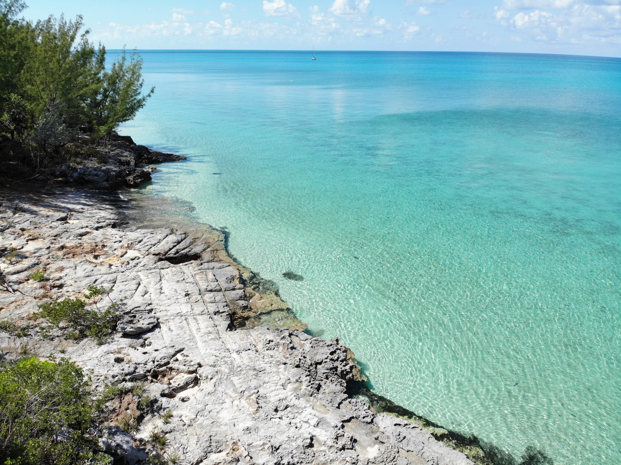 current eleuthera lot for sale