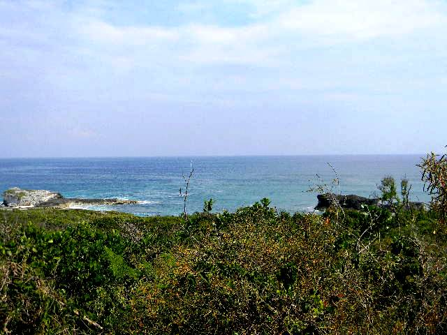 /listing-1-acre-hilltop-lot-4053.html from Coldwell Banker Bahamas Real Estate