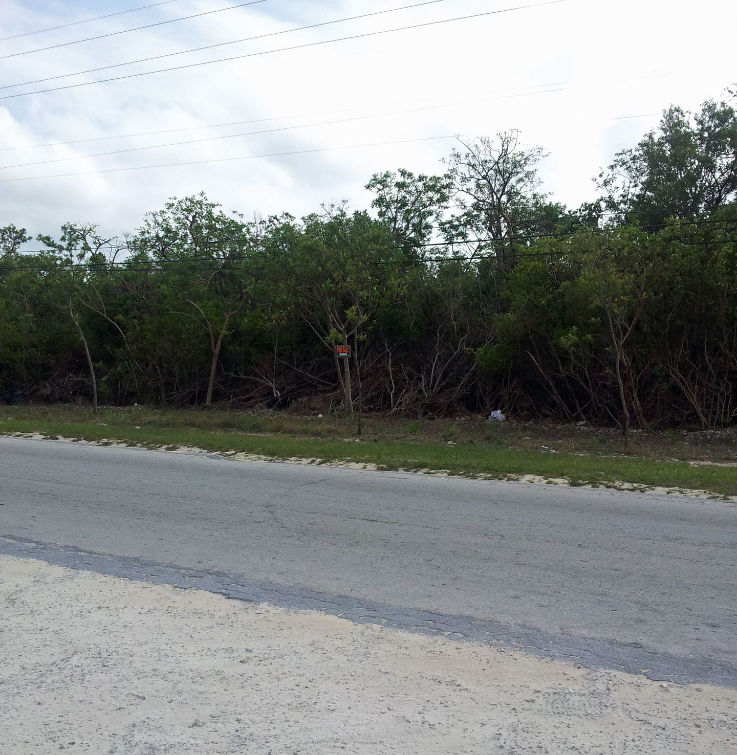 /listing-sold-palmetto-point-lot-8856.html from Coldwell Banker Bahamas Real Estate