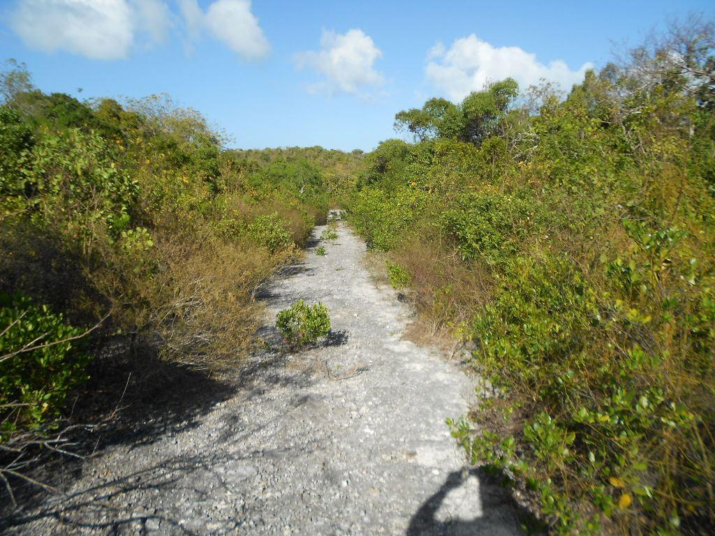 /listing-regatta-ridge-9216.html from Coldwell Banker Bahamas Real Estate