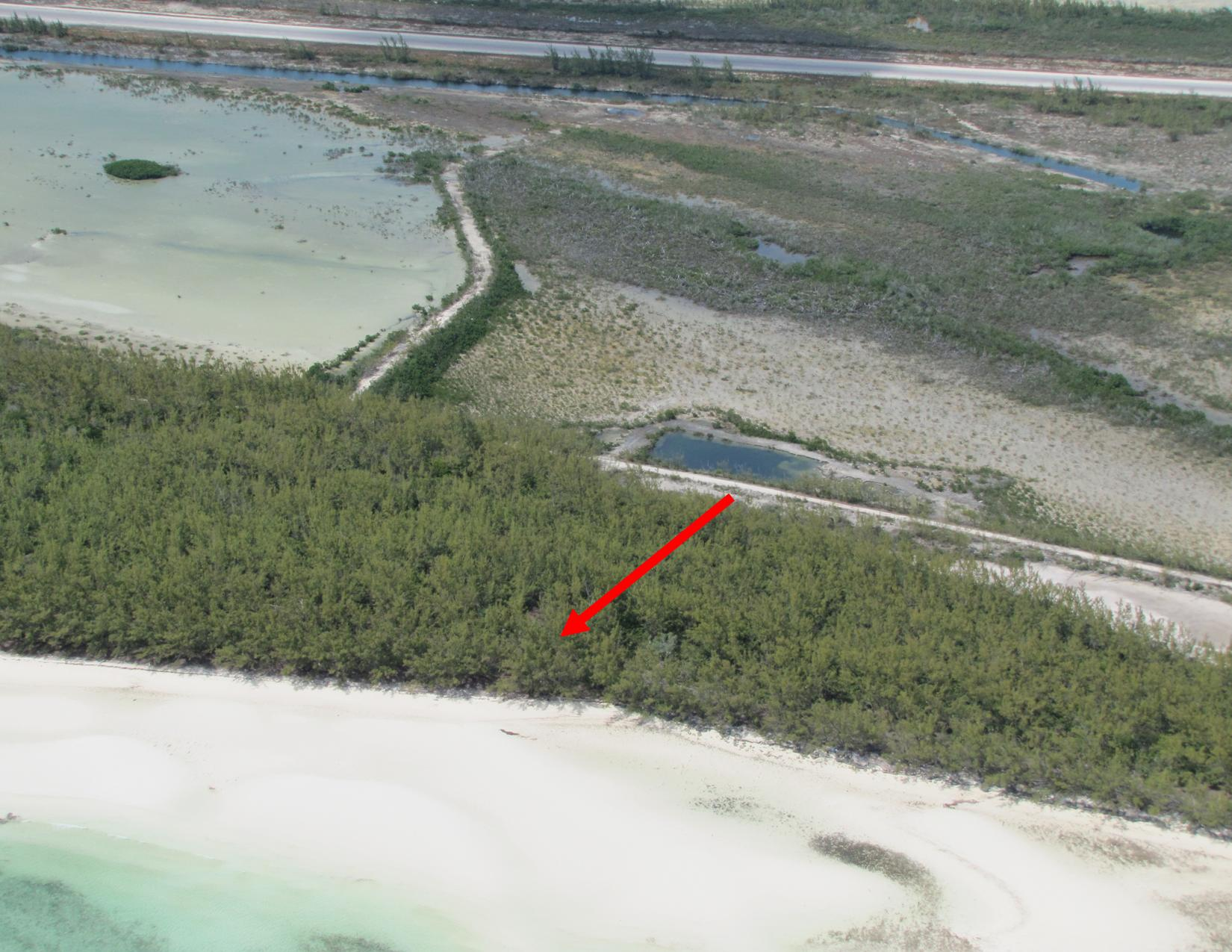 /listing-chub-cay-acreage-9790.html from Coldwell Banker Bahamas Real Estate