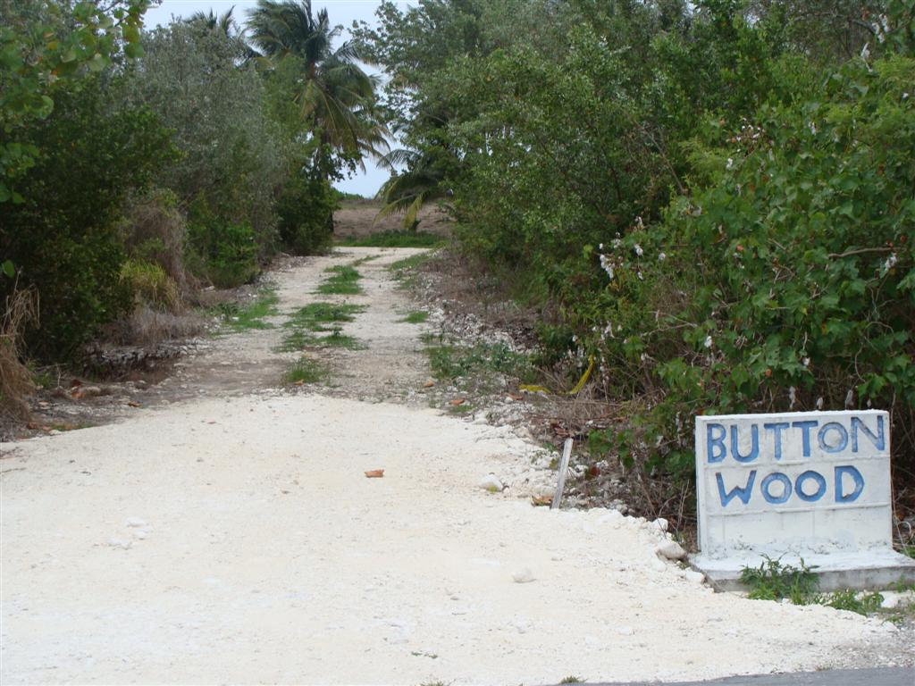/listing-3-acres-andros-9950.html from Coldwell Banker Bahamas Real Estate