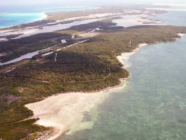 /listing-private-island-in-other-berry-islands-17498.html from Coldwell Banker Bahamas Real Estate