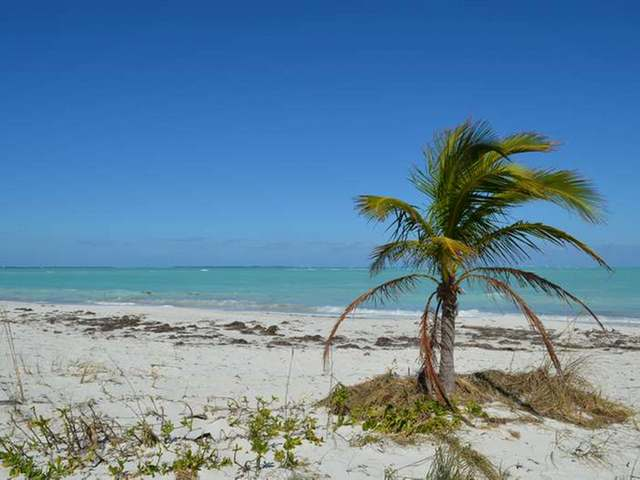 /listing-lots-acreage-in-treasure-cay-25094.html from Coldwell Banker Bahamas Real Estate