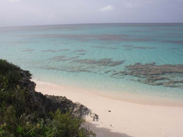 /listing-lots-acreage-in-palmetto-point-26818.html from Coldwell Banker Bahamas Real Estate