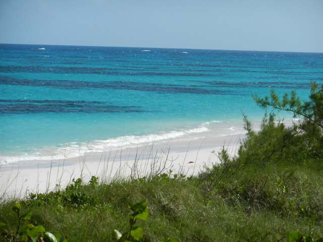 /listing-single-family-home-in-greenwood-20019.html from Coldwell Banker Bahamas Real Estate
