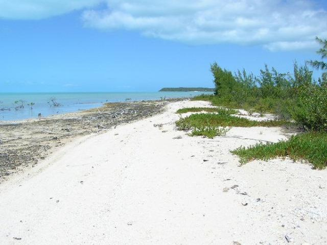 /listing-lots-acreage-in-mckanns-27071.html from Coldwell Banker Bahamas Real Estate
