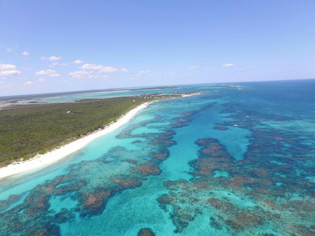 /listing-lots-acreage-in-little-harbour-19003.html from Coldwell Banker Bahamas Real Estate
