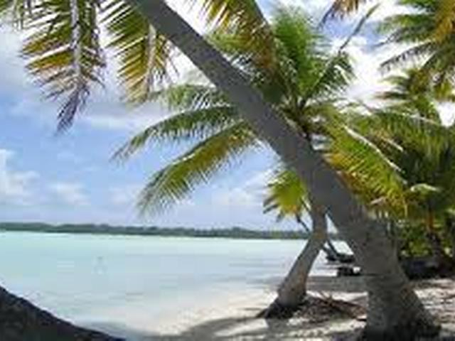 /listing-lots-acreage-in-columbus-landings-18449.html from Coldwell Banker Bahamas Real Estate