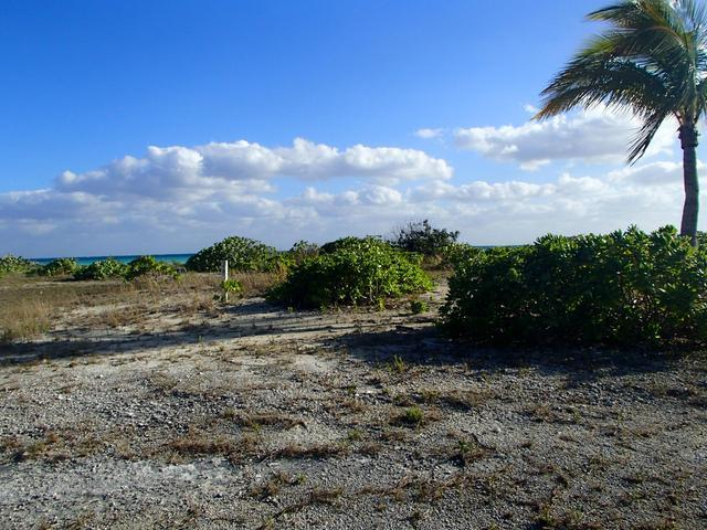 /listing-lots-acreage-in-discovery-bay-30424.html from Coldwell Banker Bahamas Real Estate