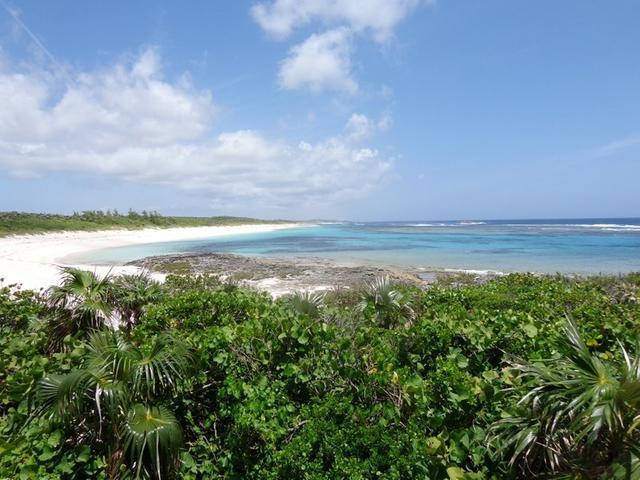 /listing-single-family-home-in-miley-21545.html from Coldwell Banker Bahamas Real Estate
