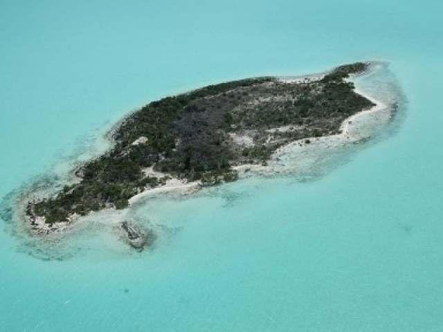 /listing-private-island-in-mangrove-cay-22525.html from Coldwell Banker Bahamas Real Estate