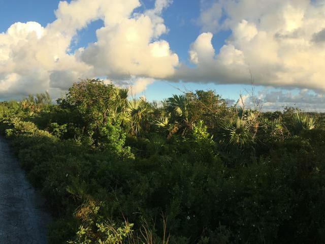 /listing-lots-acreage-in-great-harbour-cay-23003.html from Coldwell Banker Bahamas Real Estate